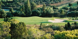 Tunisia: North Africa's golf Mecca
