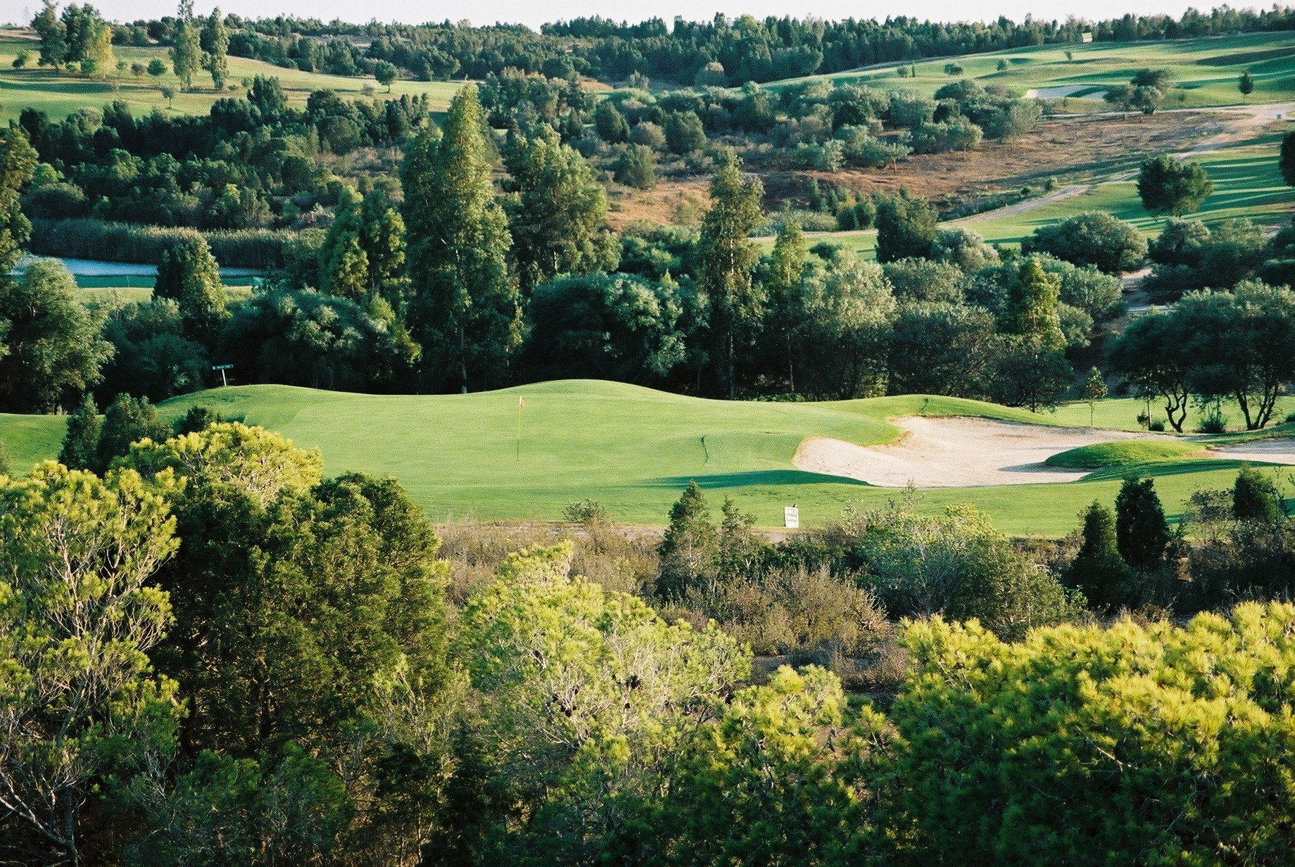 The Forets Course at Golf Citrus Yasmine Hammamet Tunisia