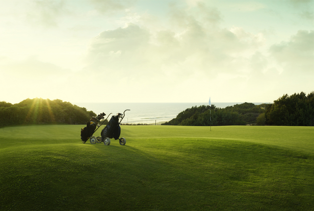Golf trolleys by the green in sunshine