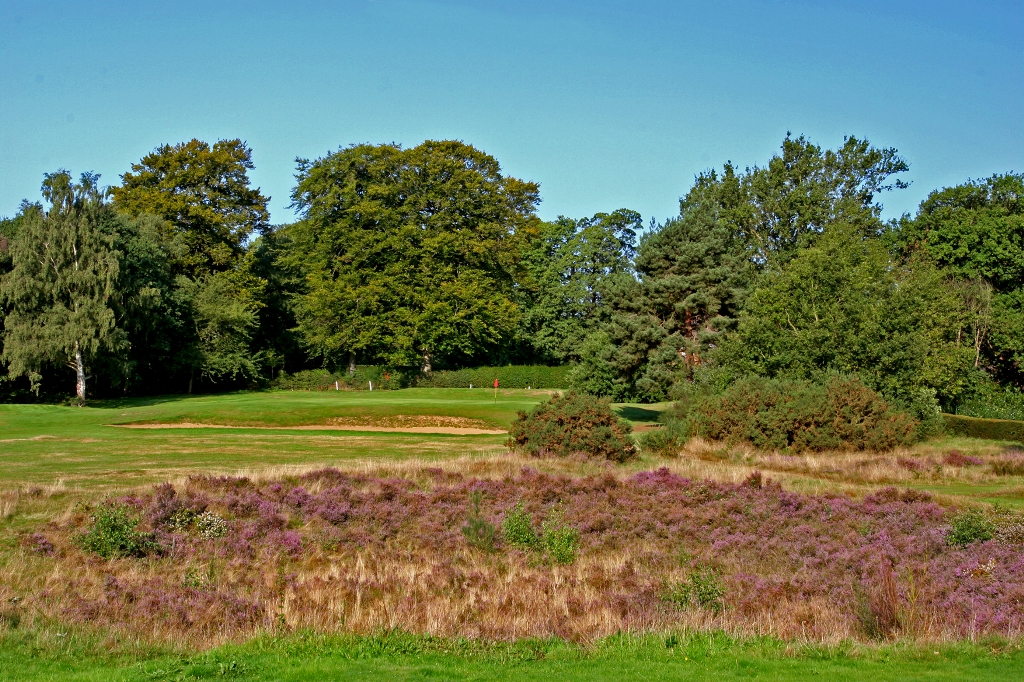The 6th green at Burhill Old Course