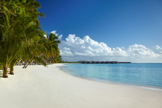 Tropical paradise: white sand beaches in the Maldives
