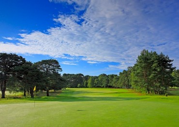 Reader Review: Short but Sweet – Ferndown Golf Club