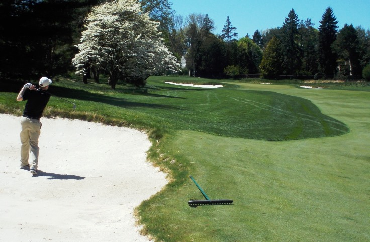 bunkers at Merion Golf Club